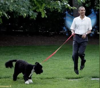 obama_pixie