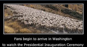 Obama fans