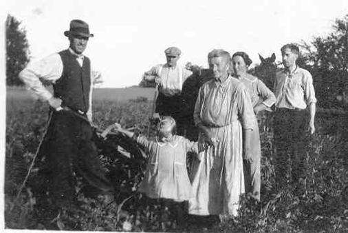 Family Farmers