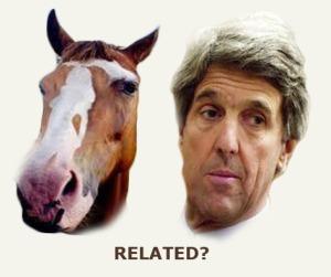 Kerry horseface