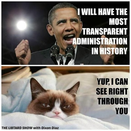 grumpy-cat-obama-2