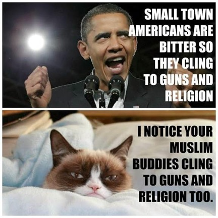 grumpy-cat-obama-4