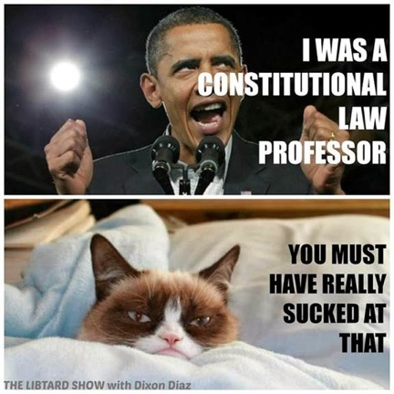 grumpy-cat-obama-6